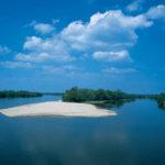 Drau-Sandbank_MSch